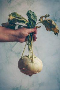 photo de légumes bio toulouse