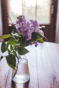 photographe ambiance fleurie